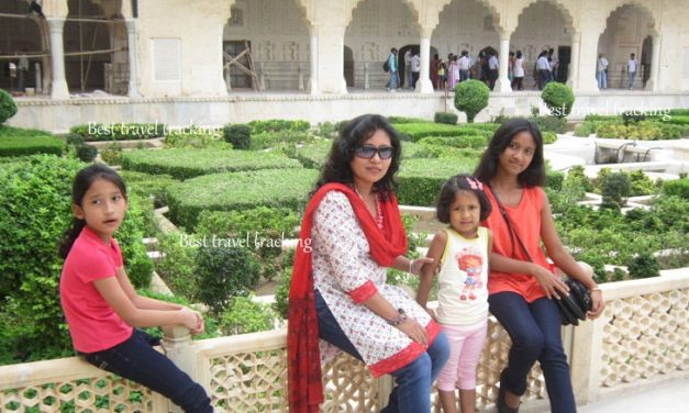 Best Architecture In Agra Fort Another Beautiful Mughal Historical Fort-Travel Tracking