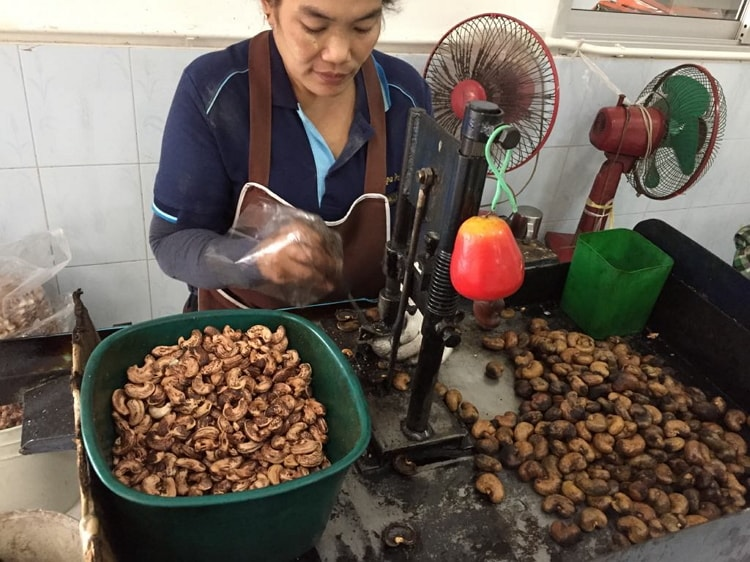 The process of taking cashews from raw