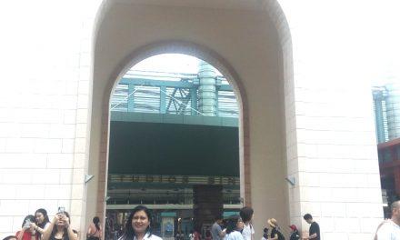 Visit To Universal Studios Singapore Of The Best Theme Parks : Best Travel
